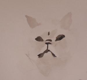oefening chinees penseel schilderen persische kat