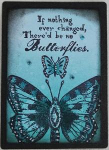 1-5-2016 Butterflies