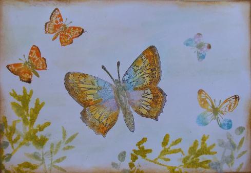 #CZC2 Vlinders