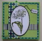 verjaardagskaart met tulp